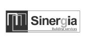 SINERGIA GRIS